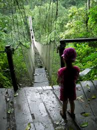 Costa Rico Child Hiking BX