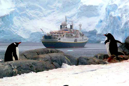 A LETTER FROM ANTARCTICA: AN INTREPID TRAVELER'S FIRST VISIT