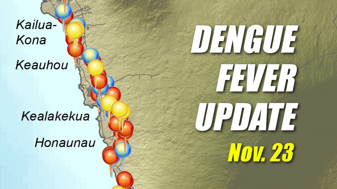 Hawaii Dengue Fever
